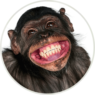 Can Your Eyesight Improve With Smiling
