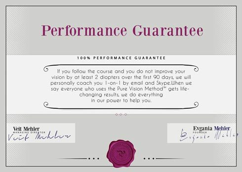 Performance Guarantee Pure Vision Method